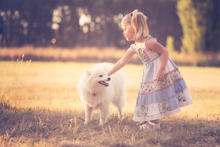 Little girl playing with a dog in a park Stock Photo