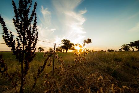 australian outback: Sunset over the Australian Outback