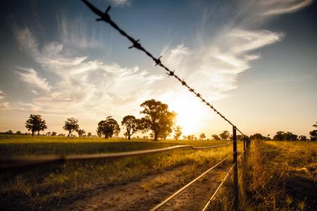 Coucher de soleil sur les plaines de foin en Australie