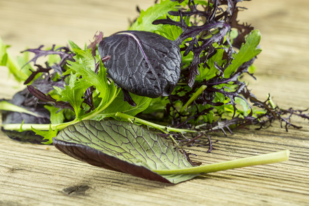 potherbs: Selection of leafy green wild herbs and a colorful yellow Nasturtium flower with its pungent peppery taste for use as healthy salad ingredients piled on a wooden table