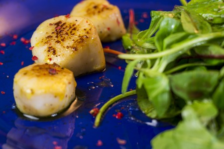 Three grilled seasoned savory Saint Jacques, or scallops, with mixed leafy green herb salad for a delicious seafood appetizer