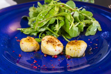 saint jacques: Three grilled seasoned savory Saint Jacques, or scallops, with mixed leafy green herb salad for a delicious seafood appetizer
