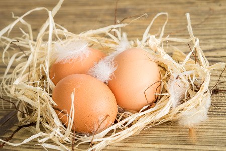undecorated: Close up Three Brown Chicken Eggs on the Nest on Top of Wooden Floor