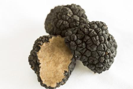 subterranean: Fresh whole and cut black Perigord truffles, Tuber melanosporum, a gourmet aromatic subterranean edible fungus found in the Perigord region of France Stock Photo