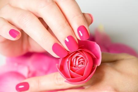 女性の手の爪に明るいピンクのマニキュアを着て、背景に白い表面に散在のバラの花びらを持つ小さなローズのクローズ アップ