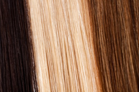 Close-up van de straat bruin, wit en donker haar Stockfoto
