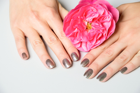 fingernail: Close up of hands with metallic fingernail paint over spread out pink rose petals Stock Photo