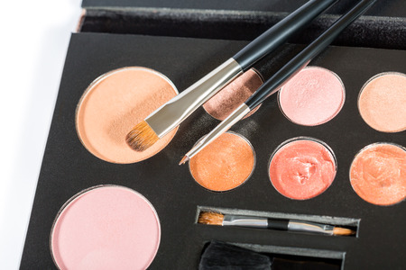 natural selection: Close up of open makeup compact with a small selection of natural shades with thin and thick tipped brushes and applicator