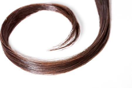 strand of hair: Long black hair in slight curl over white background Stock Photo