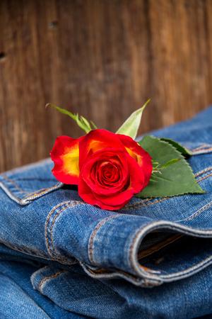textile: different jeans closeup detail textil backround