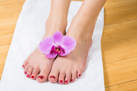 painted toenails: Close up on neatly painted toenails on female feet with purple flower between them over white towel Stock Photo