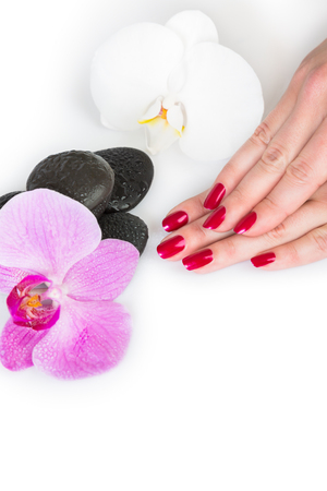 uñas pintadas: Spa theme close up over top of pretty hands holding orchid flower over white with subtle set down shadow