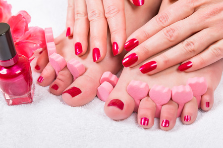 grooming product: Woman with manicured fingernails painting her toenails with red varnish from a bottle in a beauty concept, close up on her hands and feet and a fresh red tulip alongside Stock Photo