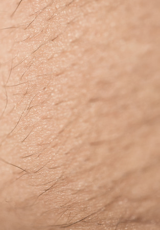 hairy chest: Extreme Anatomy Macro Close Up of Male Skin with Long Body Hair Growing in Line - Abstract Background of Male Body Hair and Skin