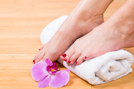 uñas pintadas: Close up on neatly painted toenails on female feet with purple flower between them over white towel Foto de archivo