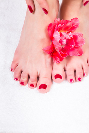 Pair of female hands touching bare feet with red nail polish over soft white texture background Stock Photo