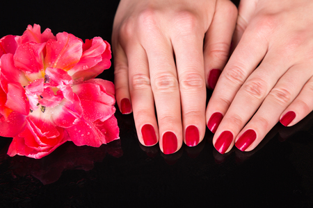 Spa theme close up over top of pretty hands under beautiful red flower over black background with copy space Zdjęcie Seryjne