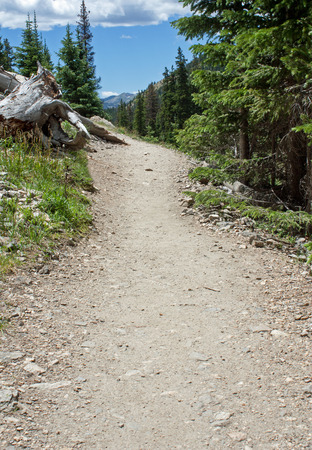 Hiking Path in Rocky Mountain National Park in the summer