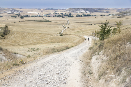 pilgrim journey: pilgrims walking trough a country road on a sunny day