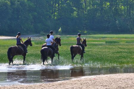 Horseback riding in a forest lake photo
