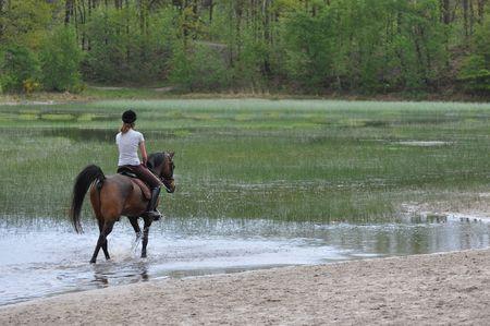 horseback riding: Woman horseback riding in a lake