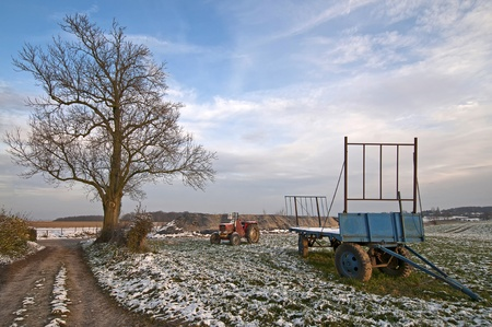 Agriculture in winter photo