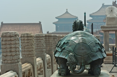 Turtle in the Forbidden City, Beijing, China