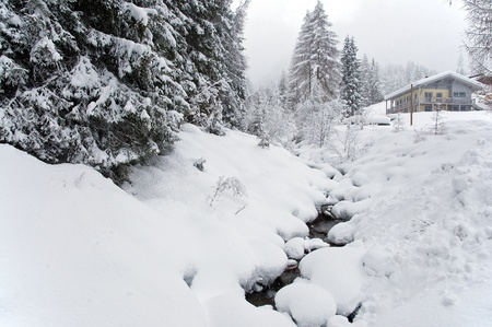 pine creek: Stream coverd with snow, Austria