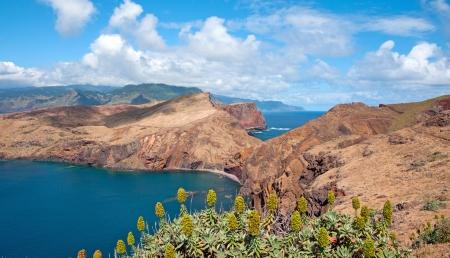 Coast of the Island of Madeira, Portugal