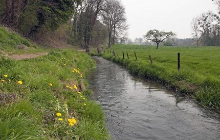 bourn: A stream flowing through fields, holland, europe Stock Photo
