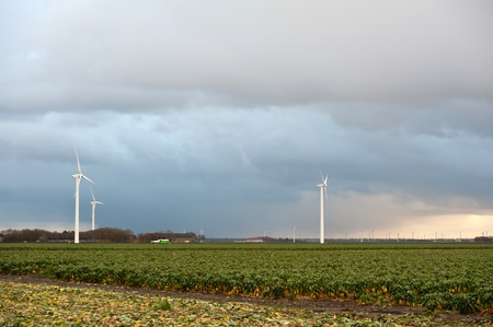 Deteriorating weather over green vegetables, Holland, Europe photo