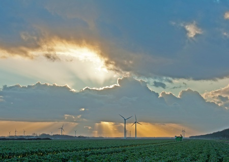 almere: Sunset and rain over vegetables and farming, Netherlands