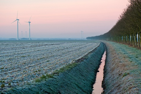 Wind turbines at dawn in winter photo