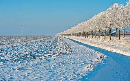 Agriculture in perspective in winter Stock Photo - 12423564