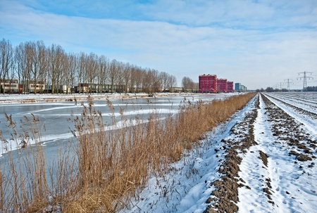 Apartments along a frozen canal in winter Stock Photo - 12423838