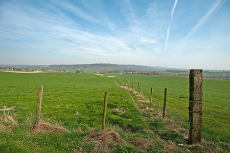 Fences in a green landscape in spring photo