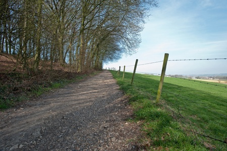 unpaved road: Unpaved road through forest and meadow Stock Photo