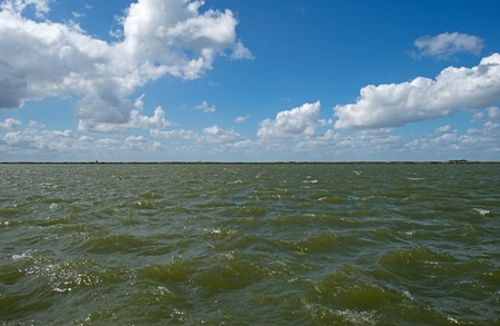 markermeer: Waves in a lake in spring