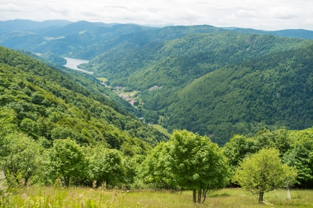 The lower mountains of Vosges photo