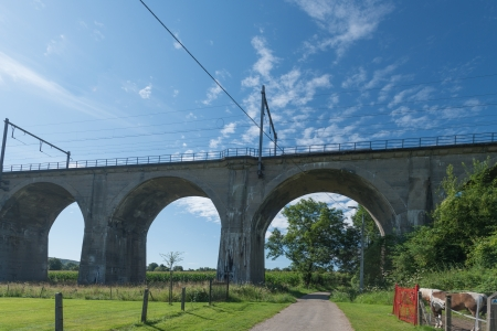 unblemished: Railway on a viaduct in summer Stock Photo