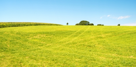 Rural landscape in summer Stock Photo - 14766820