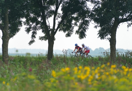 Cycling through the countryside in summer