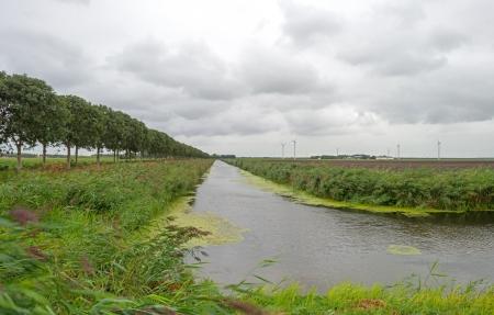 Canal through a Dutch landscape in summer photo