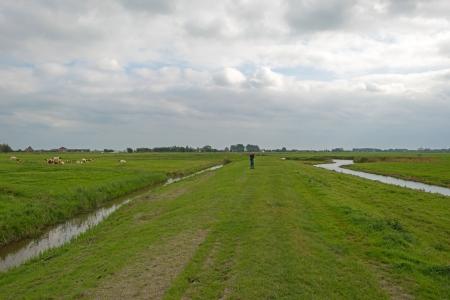 dike: Woman walking on a dike in summer