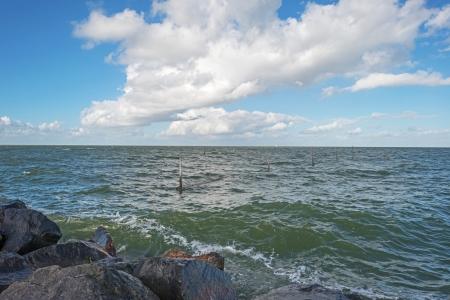 markermeer: Dike along a lake in autumn