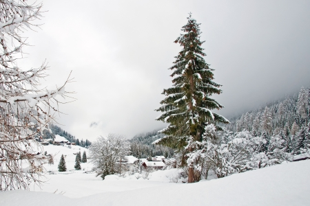 Snow in the valley in winter photo
