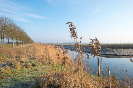 Canal through the countryside in winter Stock Photo - 17314932