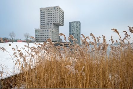 Highrise along a snowy lake in winter Stock Photo - 17376538