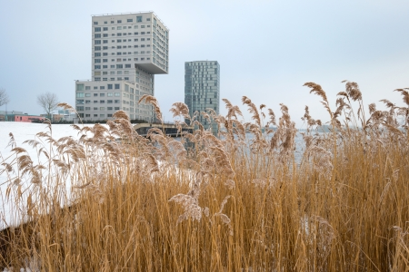 Highrise along a snowy lake in winter Stock Photo - 17376536