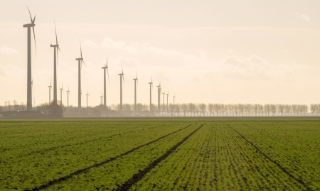 Agriculture and wind farming in winter photo
